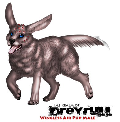 File:Wingless air pup male.png