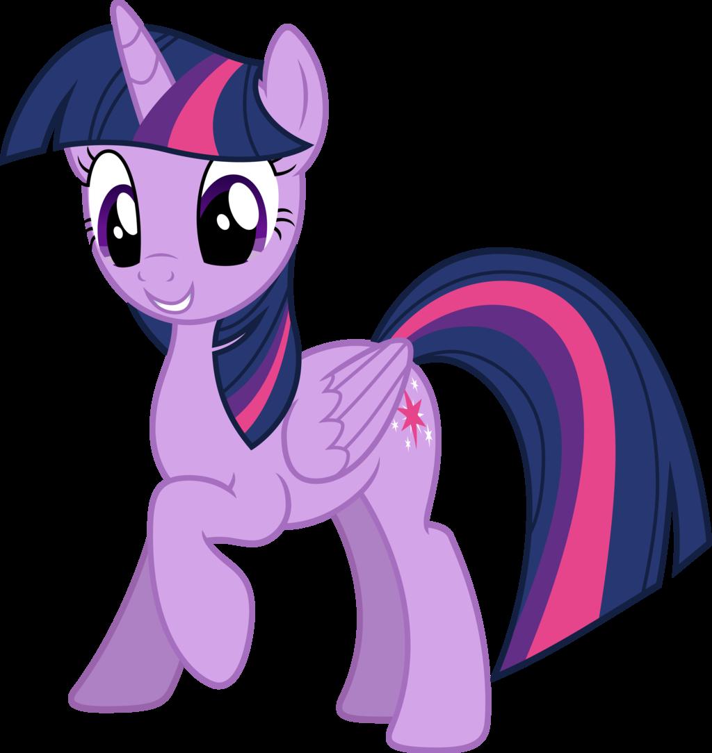twilight sparkle my little pony adventure of friendship wiki