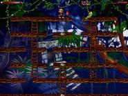 Jungle n secret3