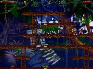 Jungle n secret6