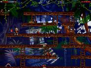 Jungle n secret5