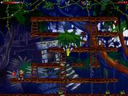 Jungle n secret4