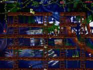 Jungle secret3