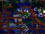 Jungle n secret13