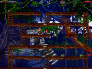 Jungle secret2
