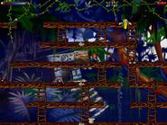 Jungle secret5