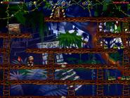 Jungle secret10