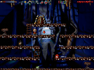 Cave secret11