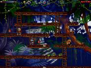 Jungle secret8