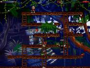 Jungle secret4