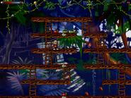 Jungle secret6