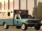 New York Emergency Medical Service