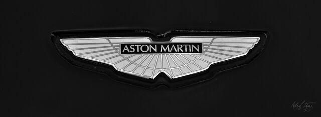 Image Aston Martin Logo Black Jpg Driver Wiki Fandom Powered