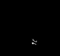 Thebaine skeletal