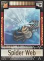DT Card 43 Spider Web