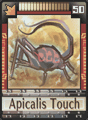 DT Card 50 Apicalis Touch