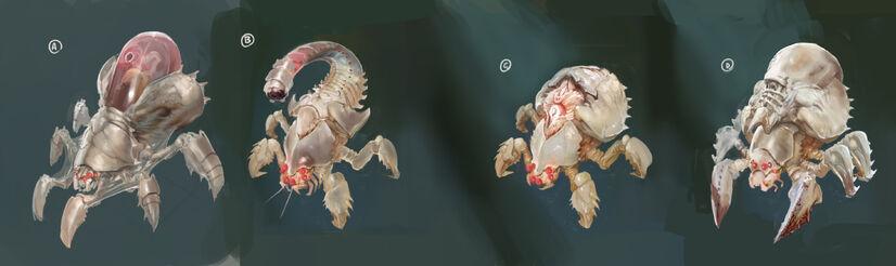 Crab creaturescolor