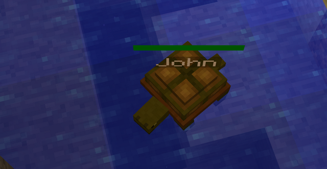 File:John the turtle.png