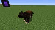 Leopard hybrid