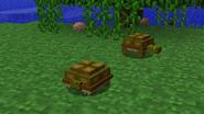 Turtlehiding