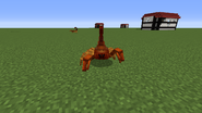 Dirt scorpion attacking