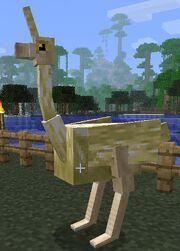 Unihorned ostrich
