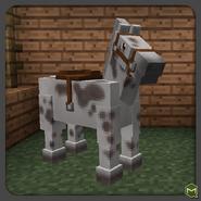 Grullo tovero horse