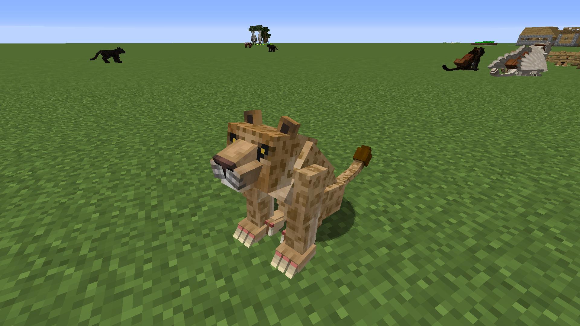 Mo Creatures Wiki Big Cats