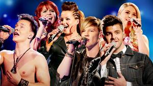 Dsds-2013-die-songs-der-kandidaten-in-der-fuenften-mottoshow