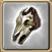 Crânio de carneiro selvagem