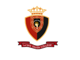 Instituto Wiki South College