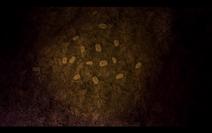 Screenshot 2019-11-20-18-42-01
