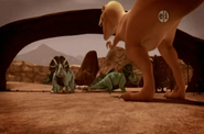 Triceratop Acers Tyrannosaurus