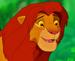 Simbaaa