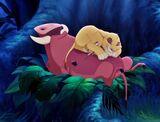 U džungli spava lav