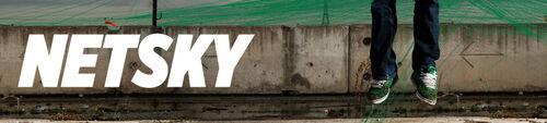 Netsky logo 11