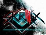 My Name Is Skrillex (Track)