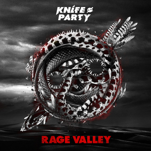 Rage Valley Cover