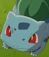 Bulbasaur-ashs-pokemon-77.2