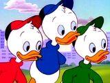 Билли, Вилли и Дилли Дак