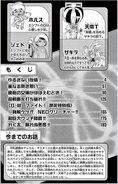 DM-FE-Vol6-pg4