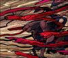 Snake Attack artwork