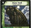 Dome Shell