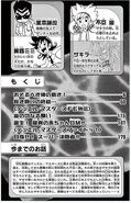 DM-FE-Vol12-pg4