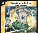 Senatine Jade Tree