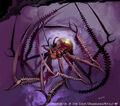 Jewel Spider artwork