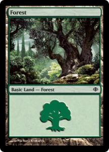 Forest 4 of 4