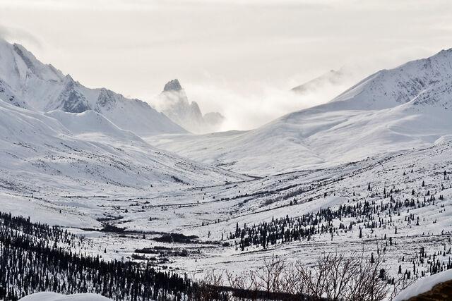 File:Dempster Highway Yukon.jpg
