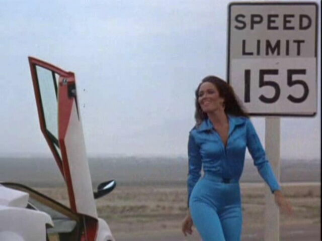 image catherine bach cannonball run ii the dukes of hazzard wiki fandom powered by. Black Bedroom Furniture Sets. Home Design Ideas
