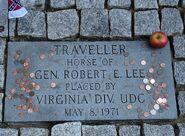 Traveller's Grave